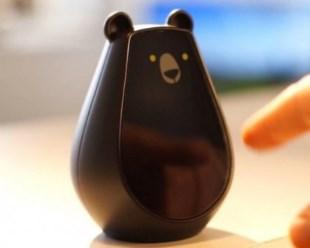 bearboot-classic-1-jpg-4687