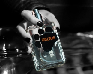 cheetos-classic-1-jpg-6538