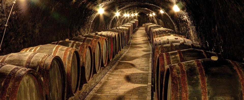 /hamag/assets/wino-przechowywanie-big-jpg-961.jpeg