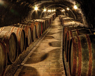 wino_przechowywanie_classic.jpg